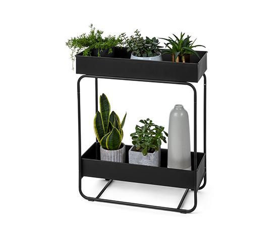 Box na rastliny