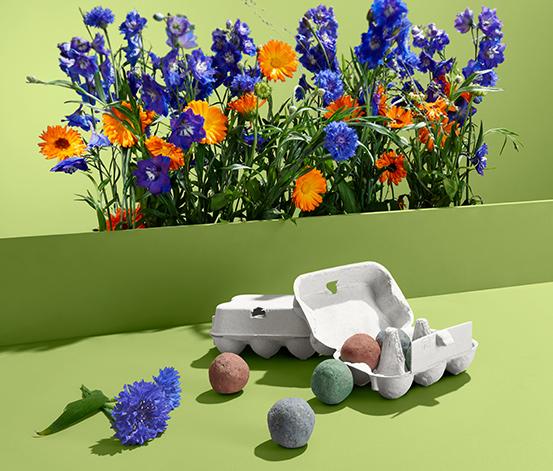 Guľky so semenami poľných kvetov, 12 ks