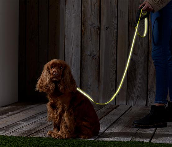 Vôdzka pre psy s reflexnými prvkami