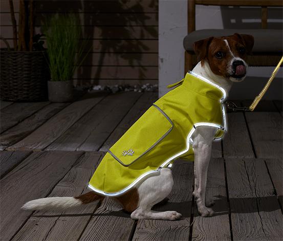 Reflexná vesta pre psy