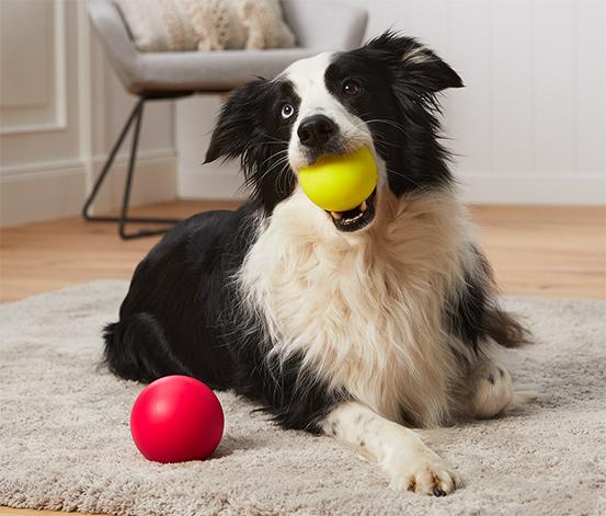 Loptičky na hranie pre psy, 2-dielna súprava