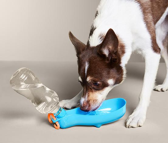 Cestovná fľaša na pitie pre psy